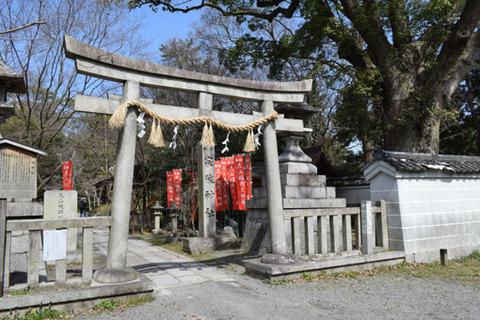 宗像神社-鳥居