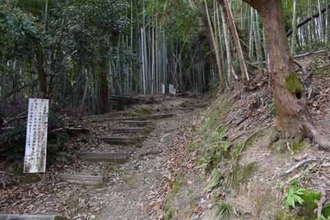 天王山への登山道
