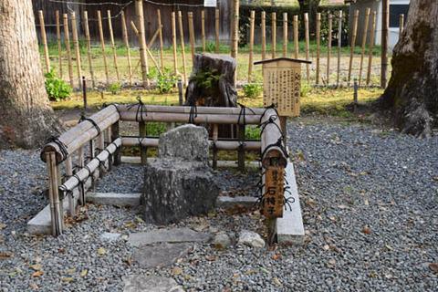 兒神社-石椅子