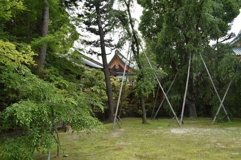 南神苑-内拝殿の屋根