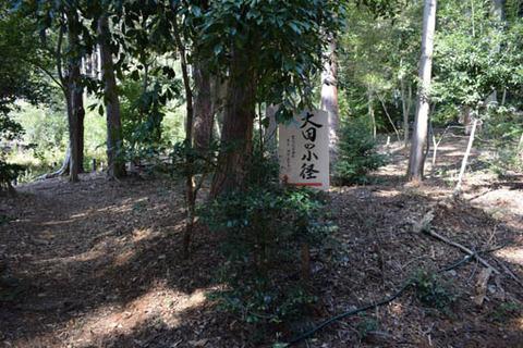 大田の小径
