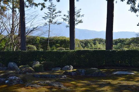 庭園-亀石