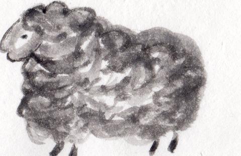 羊2015年用