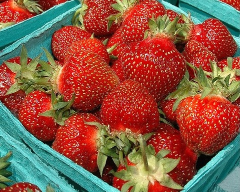 organic-strawberries2