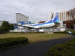 2010年11月23日 パンジャ7歳の誕生日 in 埼玉県所沢航空公園 11