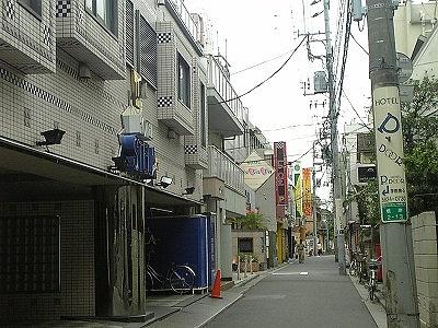 たんぽぽ トリミングの一日(2009年07月17日)  3