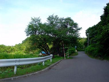 滝の沢駅跡