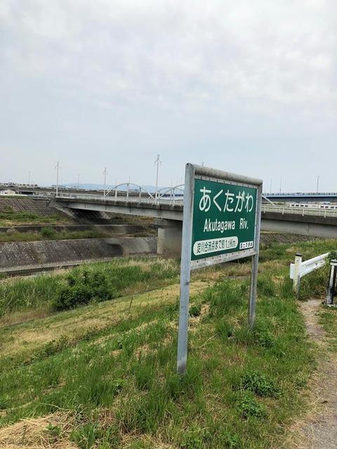 芥川(大阪府高槻市)-2_20190602