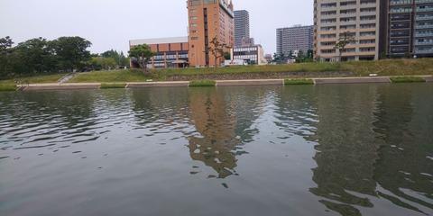 190602 岡崎市乙川河川緑地(正面)DSC_0122-1