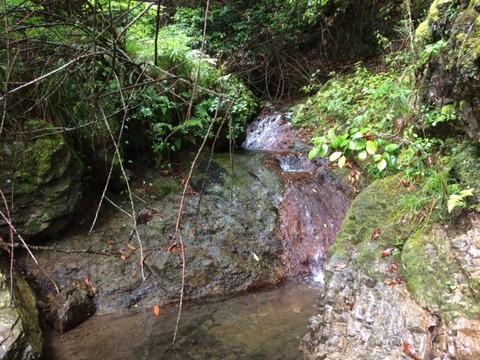 奥村川上流