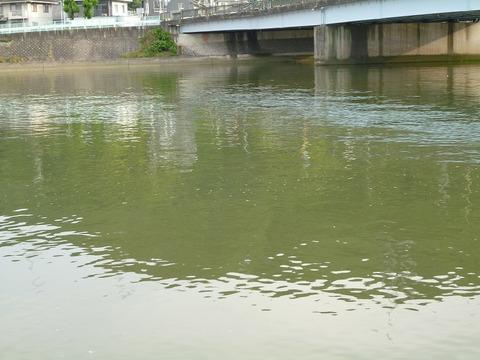 黒瀬川P1030487