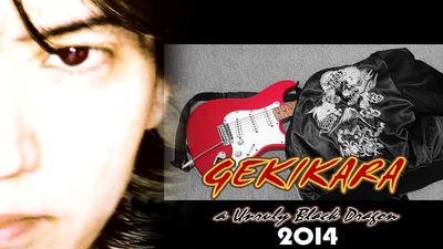 gekikara2014