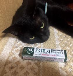 gum+hal