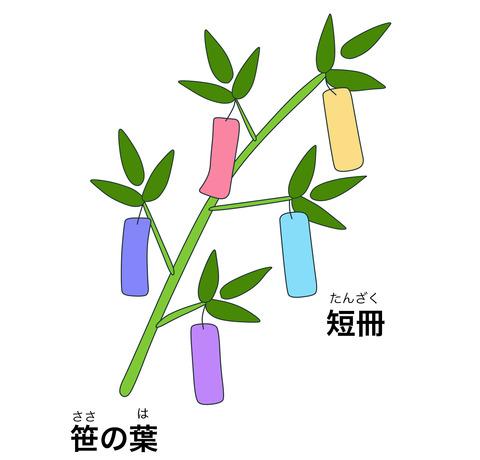 blog笹の葉