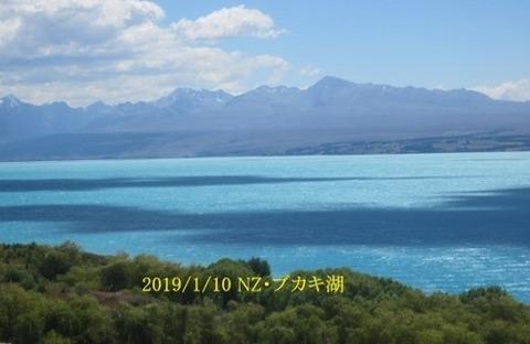 ニュージーランド6