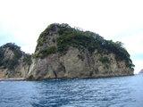 堂ヶ島の象