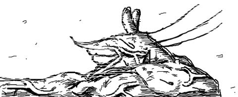 livejupiter-1419589294-41