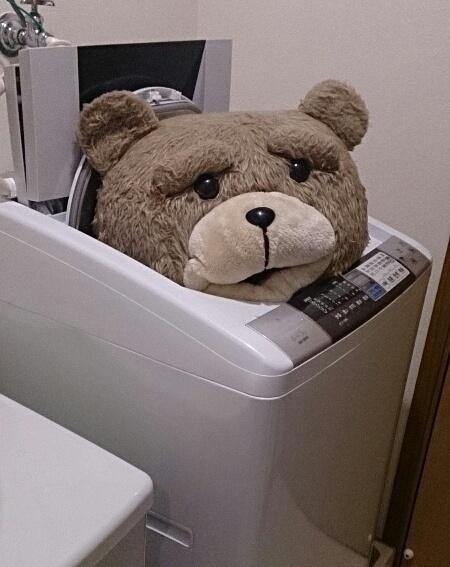 ぬいぐるみ 洗い 方