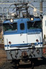 IMG_6532-1