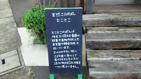 NEC_0217