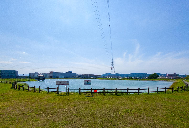 Horie_Shin_Ike
