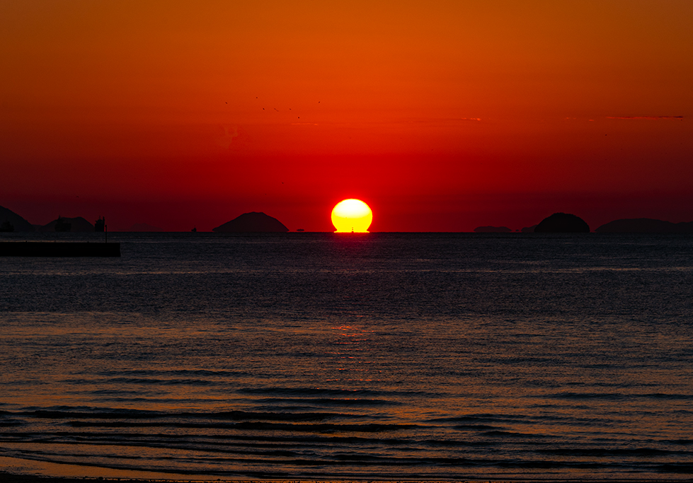 DARUMA_Sunset subtle