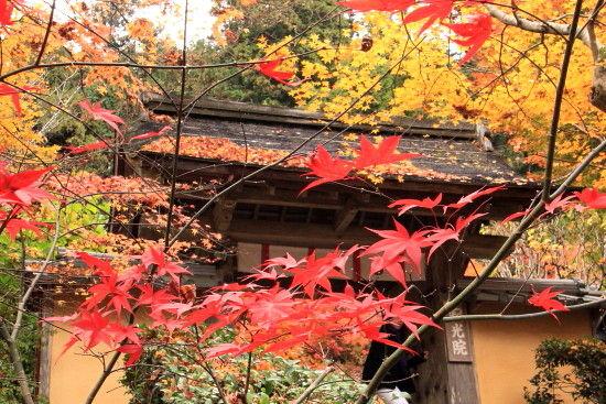 京都一人旅 517 ^^
