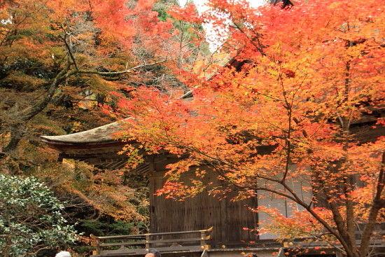 京都一人旅 207^^