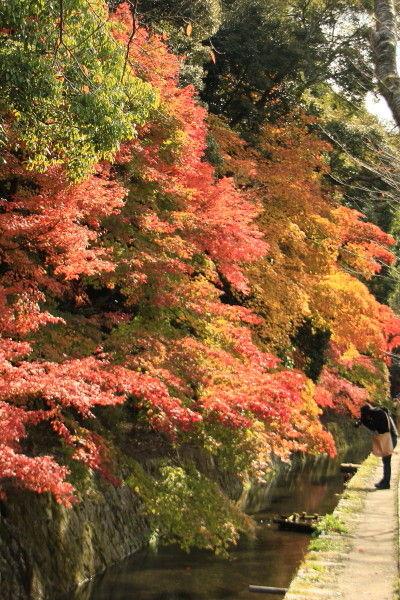 京都一人旅 928 ^^