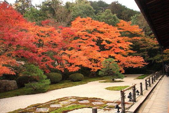 京都一人旅 632^^