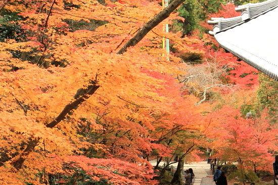 京都一人旅 914^^