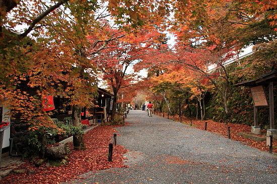 京都一人旅 078^^