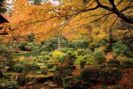 京都一人旅 186^^