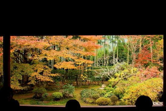 京都一人旅 344^-^