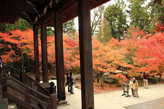 京都一人旅 907^^