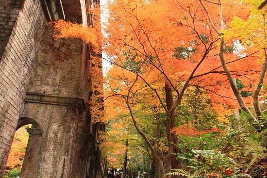 京都一人旅 788^^