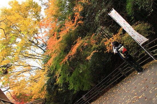 京都一人旅 043^-^