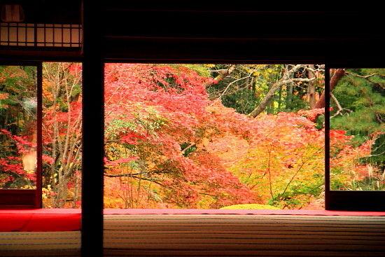 京都一人旅 619^^
