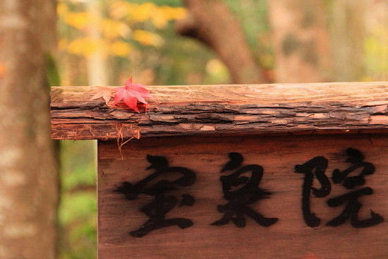 京都一人旅 098^^