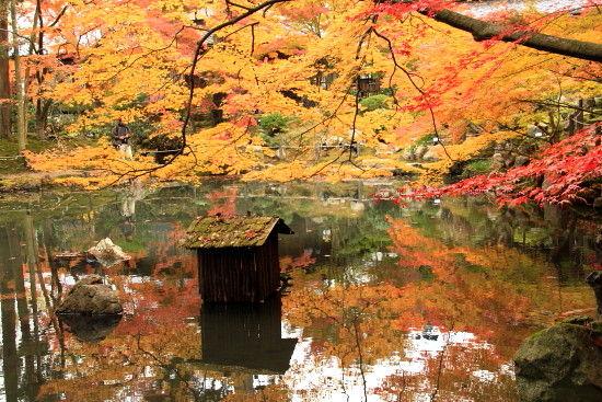 京都一人旅 700^^