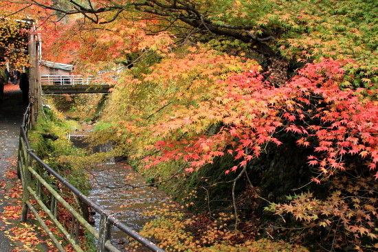 京都一人旅 057^-^