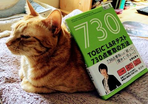 blog1921