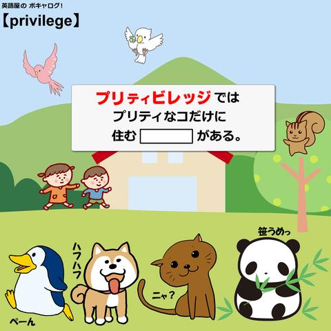 blog-privilege