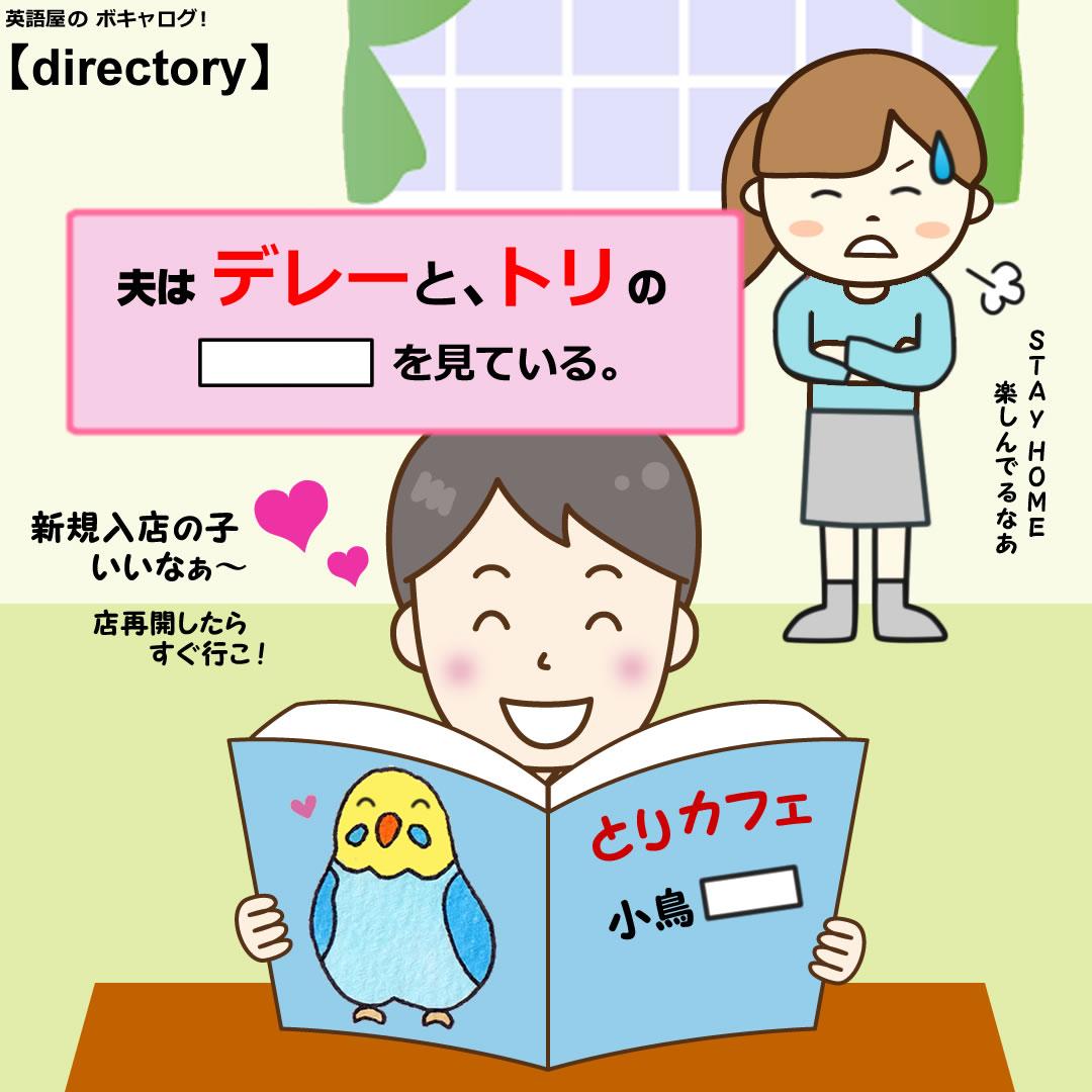 directory_Mini