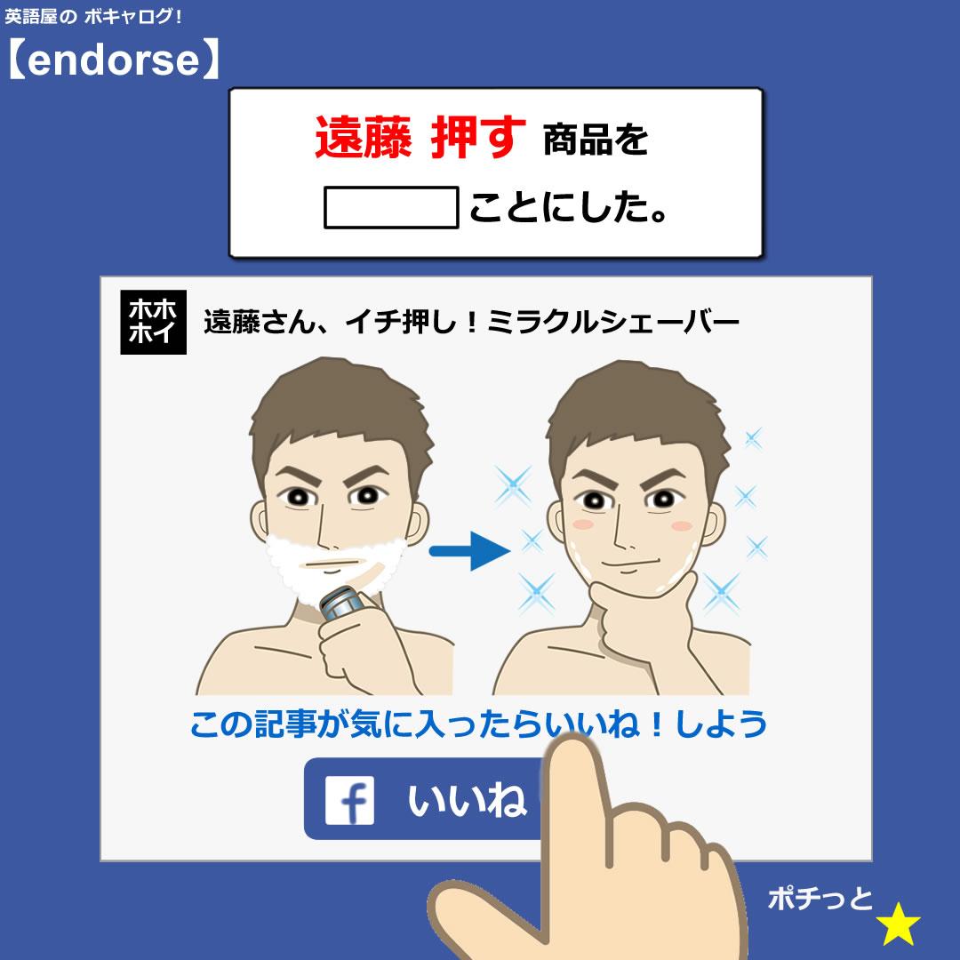 endorse_Mini