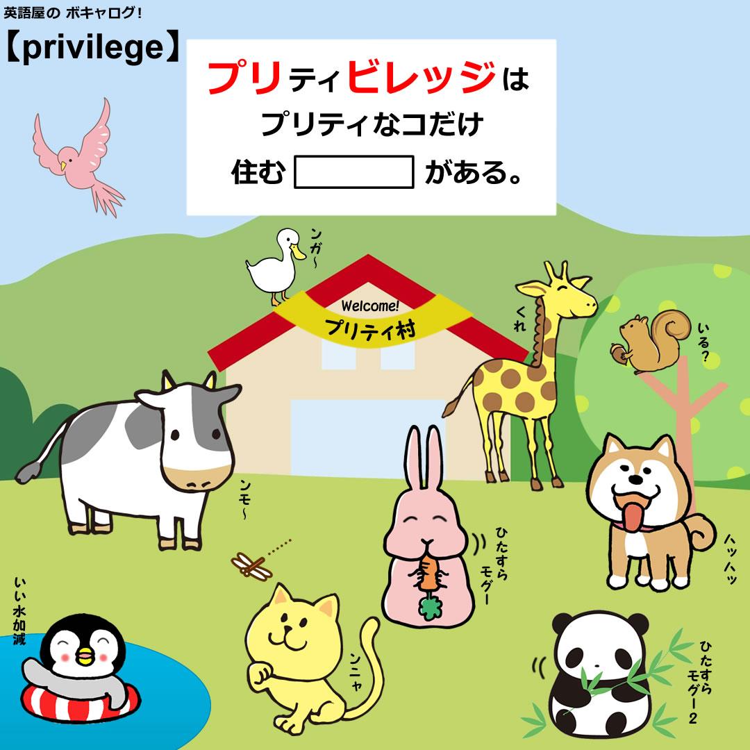 privilege_Mini