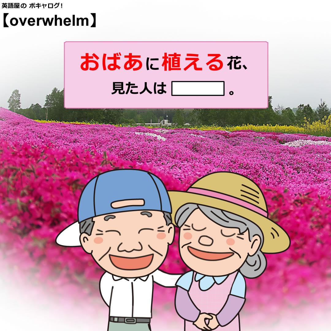 overwhelm_Mini