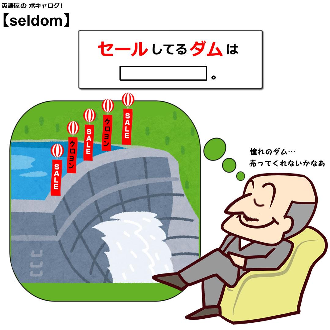 seldom_Mini