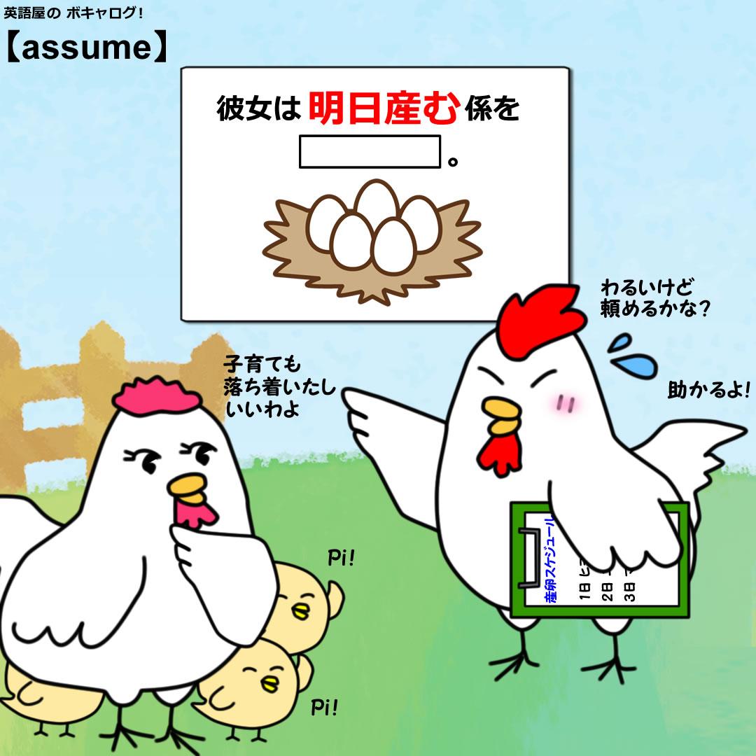 assume_Mini