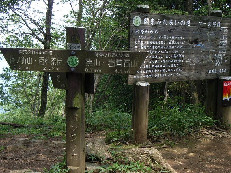 四季八景 壮快山ある記:沢沿いの清涼登山・・・奥多摩・棒ノ ...